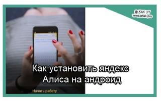 Как установить Яндекс Алиса на телефон
