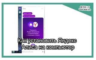 Как установить Яндекс Алиса на компьютер