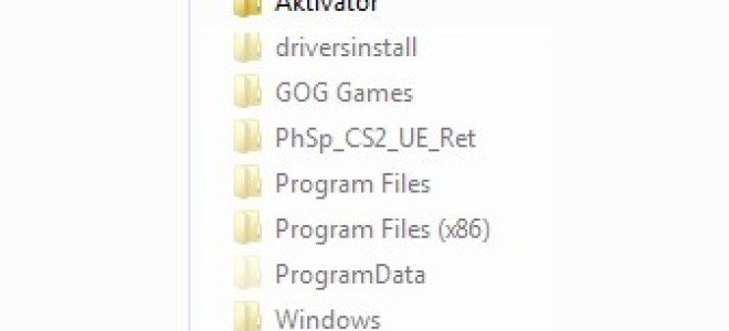Как открыть скрытые файлы windows 7